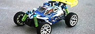 1:16 Mini Nitro RC Buggies